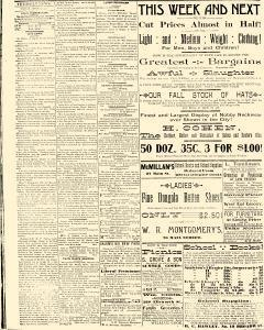 Salem Daily News, August 26, 1890, Page 4