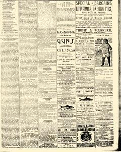 Salem Daily News, September 03, 1890, Page 3