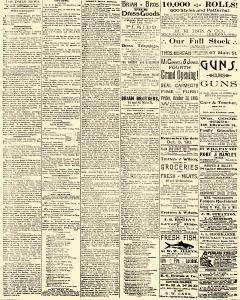 Salem Daily News, September 29, 1890, Page 2