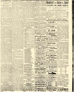 Salem Daily News, October 09, 1890, Page 3