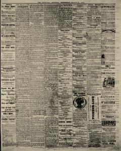 Sandusky Daily Register, August 27, 1873, Page 6
