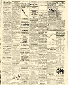 Steubenville Daily Herald and News, March 23, 1875, Page 3