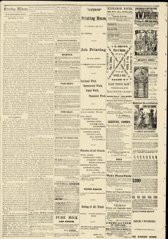 Evening Mirror, March 09, 1877, Page 2