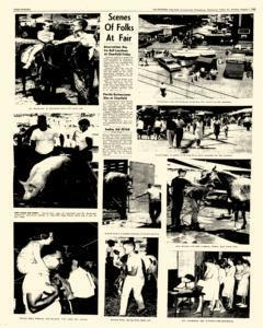 Clearfield Progress, August 01, 1966, Page 14