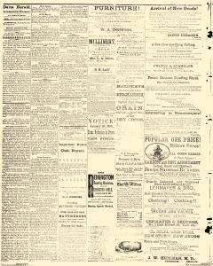Delta Herald, March 06, 1885, Page 2