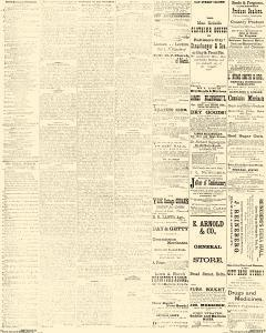 Delta Herald, March 06, 1885, Page 3