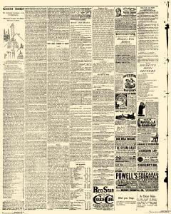 Delta Herald, March 06, 1885, Page 4