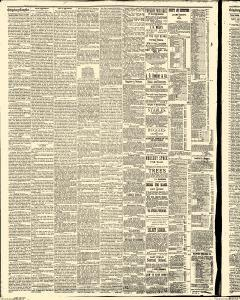 Gettysburg Compiler, February 10, 1885, Page 2