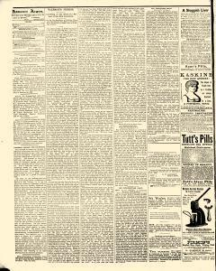 Advance Argus, January 05, 1888, Page 4