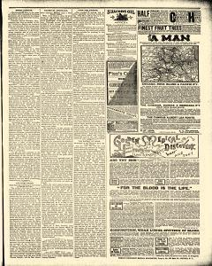 Advance Argus, February 09, 1888, Page 3