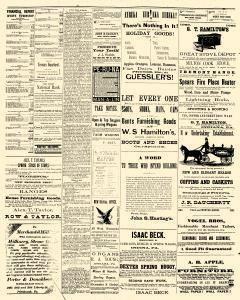 Indiana Weekly Messenger, April 18, 1883, Page 4