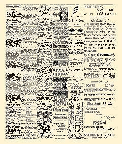 Lock Haven Express, February 19, 1890, Page 2