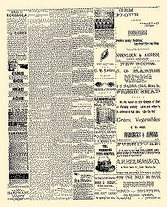 Lock Haven Express, February 24, 1890, Page 3