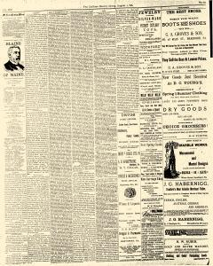 McKean County Miner, August 01, 1884, Page 2