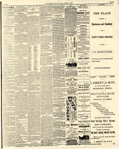 McKean County Miner, August 01, 1884, Page 3