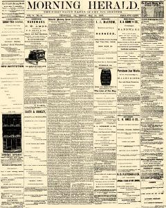 Titusville Herald , May 31, 1867, Page 1