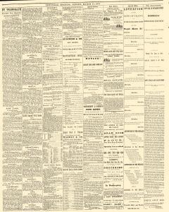 Titusville Herald , March 17, 1874, Page 2