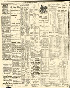 Titusville Herald , June 12, 1875, Page 4