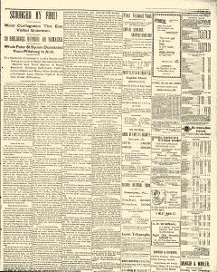 Daily News Standard, November 02, 1901, Page 3