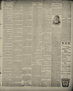 Uniontown News Standard, March 22, 1894, Page 5