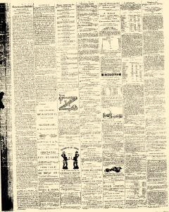 Daily Gazette and Bulletin, November 14, 1873, Page 2