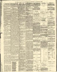 Gazette and Bulletin, February 04, 1876, Page 2