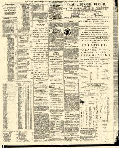 Gazette and Bulletin, February 04, 1876, Page 3