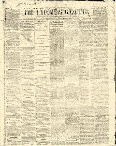 Lycoming Chronicle, March 24, 1862, Page 10