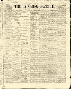 Lycoming Chronicle, March 24, 1862, Page 14
