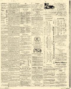 Williamsport Lycoming Daily Gazette, May 04, 1868, Page 3