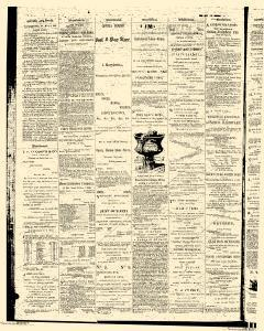 Williamsport Lycoming Daily Gazette, May 04, 1868, Page 4