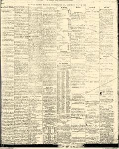 Williamsport West Branch Bulletin, July 21, 1866, Page 3