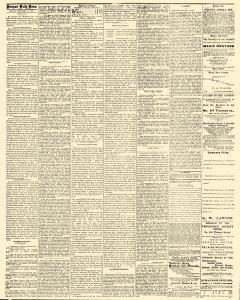 Newport Daily News, February 06, 1874, Page 2