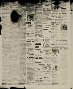 Aiken Journal and Review, February 14, 1900, Page 4