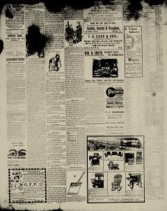 Aiken Journal and Review, February 14, 1900, Page 8