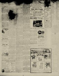 Aiken Journal and Review, February 21, 1900, Page 8