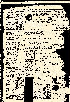 Abilene Daily Reporter, March 20, 1891, Page 4