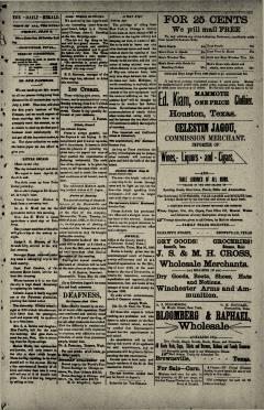 Brownsville Daily Herald, June 09, 1893, Page 6