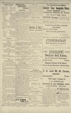 Brownsville Daily Herald, August 08, 1893, Page 11