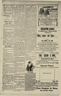 Brownsville Daily Herald, August 08, 1893, Page 10