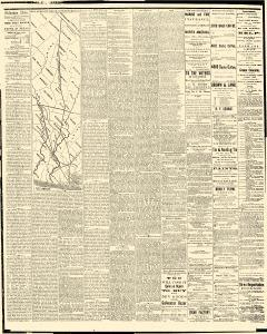 Galveston Daily News, February 28, 1875, Page 2