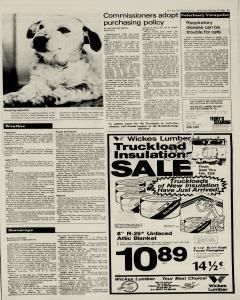 New Braunfels Herald Zeitung, February 16, 1983, Page 3