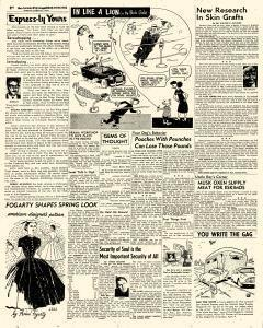 San Antonio Express and News, March 21, 1954, Page 87