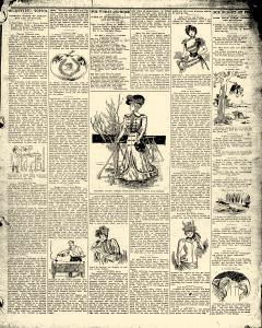 Advocate, February 04, 1899, Page 7