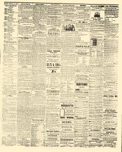 Fountain City Herald, April 11, 1854, Page 3