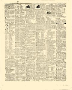 Daily Sentinel and Gazette, February 19, 1846, Page 3