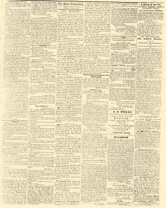 Pepin Independent, June 03, 1859, Page 3