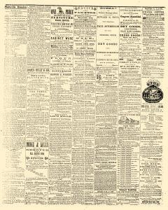 Platteville Examiner, February 25, 1858, Page 3
