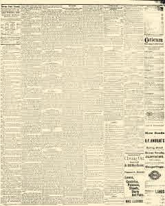 Stevens Point Daily Journal, July 23, 1881, Page 6