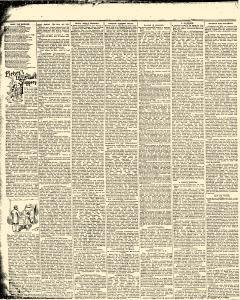 Stevens Point Daily Journal, January 14, 1893, Page 6